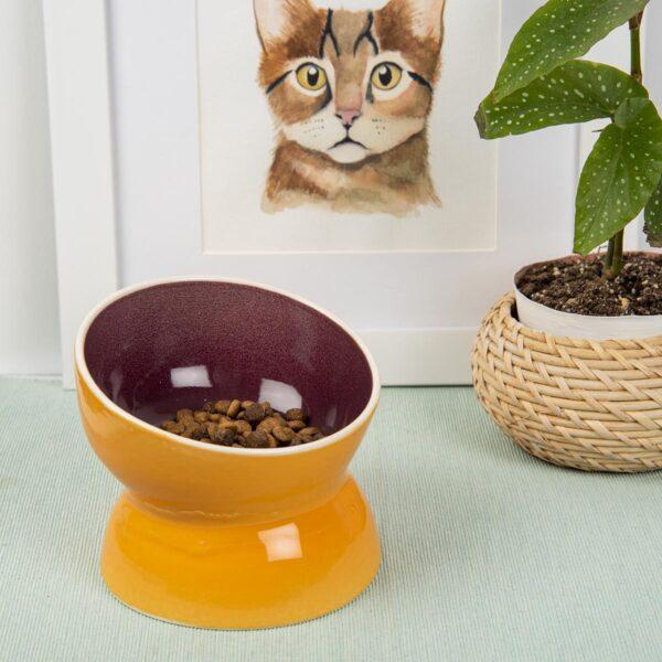 Kedi Mama Su Kabı – Seramik