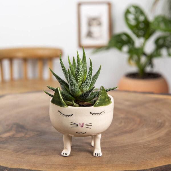 Seramik Saksı – Kedi