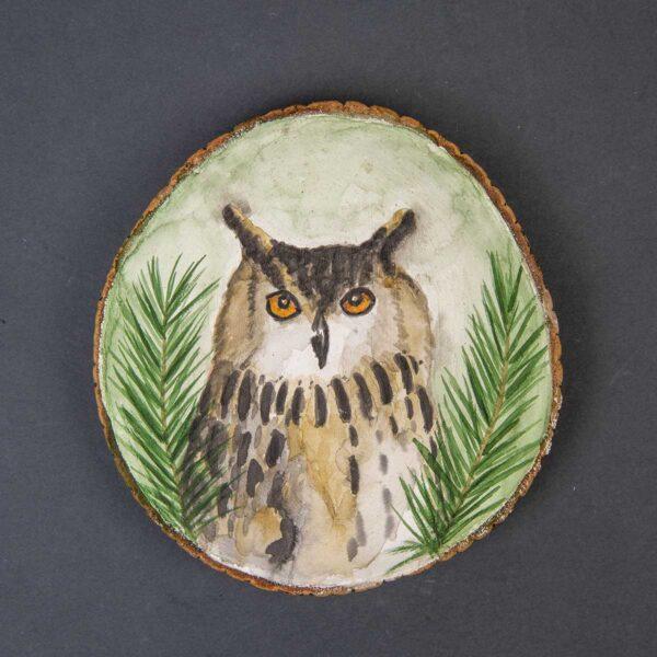 Sulu boya Duvar Panosu – Baykuş